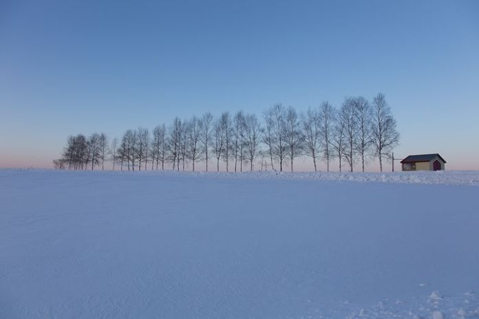 北海道新雪谷将开发一处价值 6 亿美元的度假公寓
