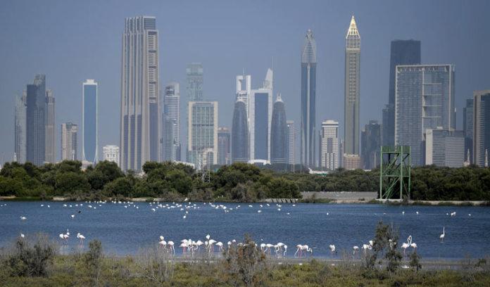 迪拜与包括柬埔寨在内的东盟成员国建立贸易关系