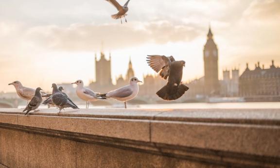 在英国出售房屋的最佳时机是什么?