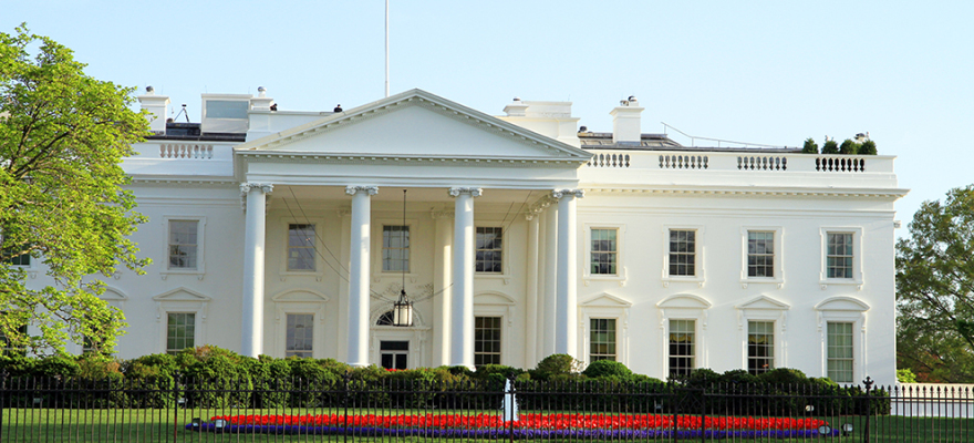 16% 的美国居民会因自己支持的总统候选人无法当选而离开美国