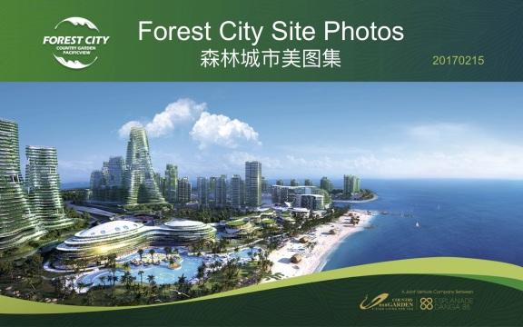 森林城市美图集