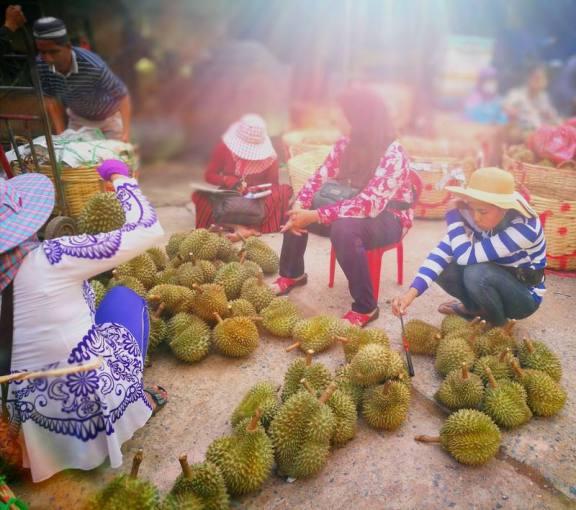 你一定不知道,柬埔寨的榴莲才是榴莲界的王者!