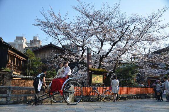 2019 年日本各城市办公地产市场发展情况及未来预测