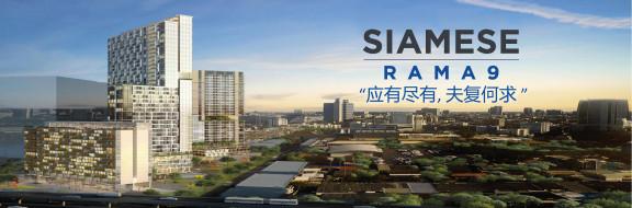 暹罗天街 - Siamese Rama 9